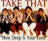 Take That, How deep is your love (1996)