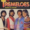 Tremeloes, Silence is golden (#pk510)