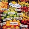 MTV Fresh (1995), Blur, Edwyn Collins, Cranberries, Lenny Kravitz..